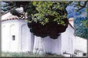 Ιερά Μονή Παναγίας Μαρίου - Κυνουρίας