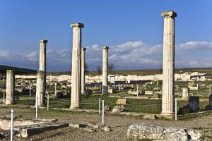 Ὁ Μέγας Ἀλέξανδρος καί οἱ συνεργάτες του ἀπό τήν Χαλκιδική