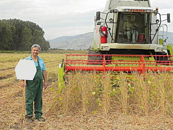 Σόγια: Ένα στρατηγικής σημασίας φυτό (Μέρος B)