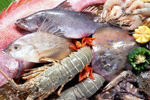 Γερνάει πρόωρα ο εγκέφαλος όταν δεν τρώμε ψάρια