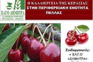 Ενημερωτική εκδήλωση με θέμα: «Η καλλιέργεια της κερασιάς στην Περιφερειακή Ενότητα Πέλλας», 13-12-2018
