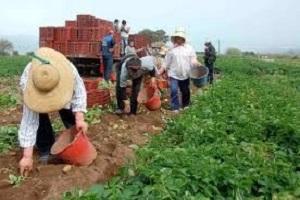 Η Αγροτική Εκπαίδευση στη Γεωργία, Στόχος της δια Βίου Μάθησης
