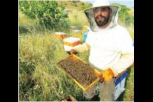 Συνέντευξη μὲ τὸν Κων/νο Χ' Ἀναγνώστου, μελισσοκόμο
