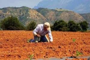 """""""Η Γεωργική Γη Υψηλής Παραγωγικότητας (Γ.Γ.Υ.Π.) της Χώρας σε κίνδυνο"""""""