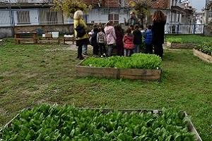 Τὰ πρωτάκια μας στοὺς Σχολικοὺς Κήπους