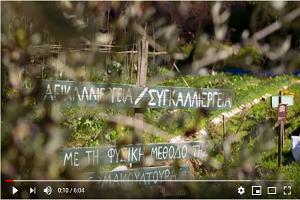 Ἱστορίες μὲ τὸ ἔδαφος: Γιῶργος Ξεπαπαδάκος, ἀστικὸς καλλιεργητὴς