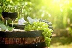 Πλήγμα ο κορωνοϊός για το ελληνικό κρασί