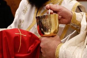 Αιτωλίας Κοσμάς: «Μη φοβόμαστε, μην αποφεύγουμε τὸν ἐκκλησιασμό. Μη διστάζουμε να πλησιάσουμε το Άγιο Ποτήριο»