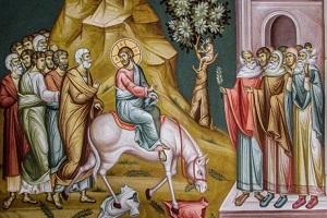 Συνοδοιπόροι του Θείου Πάθους  - Θεολογικό σχόλιο στο περιεχόμενο και το νόημα της Κυριακής των Βαίων