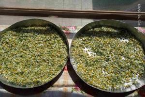 Αγροτικός Τομέας Ενωμένης Ρωμηοσύνης: Χαμομήλι
