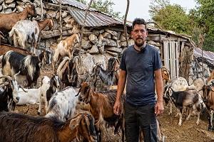 Εγκατέλειψε την Αθήνα για να γίνει κτηνοτρόφος στο χωριό