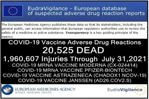 20.595 θάνατοι και 1,9 εκατομμύρια τραυματίες (50% σοβαρά) αναφέρθηκαν στην επίσημη βάση δεδομένων της ΕΕ