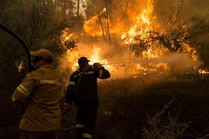 Η «προφητική» συνεδρίαση του δημοτικού συμβουλίου στο Μαντούδι λίγες μέρες πριν την καταστροφική πυρκαγιά!
