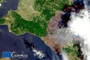 Ο Άγιος Ιάκωβος (Τσαλίκης) για τα δάση και τις πυρκαγιές