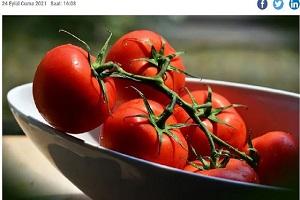 Η Ρωσία εντόπισε ιό σε ντομάτες από την Τουρκία